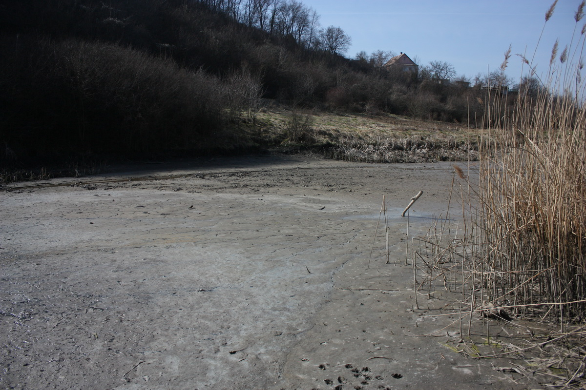 leeresztett tó